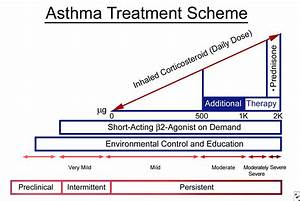 Asthma in Pregnancy Signs, Symptoms & Treatment