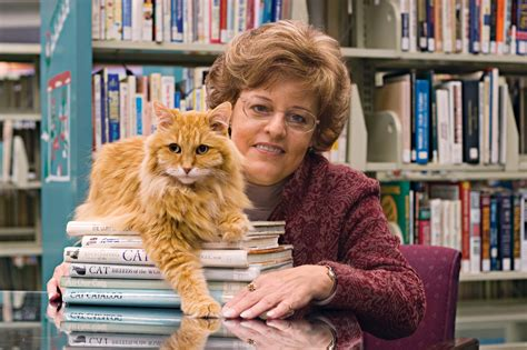 Dewey The Library Cat Spawns Book Series  American Profile