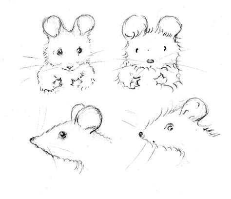 draw  mouse  realistic features  craftsy