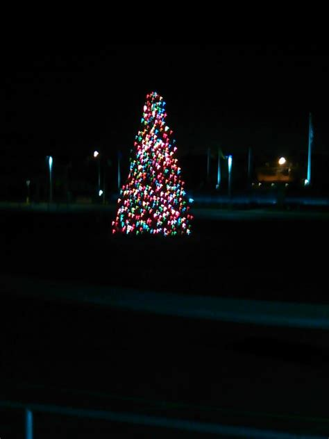 what is theprices of christmas trees at wildwood farm in auburntown tn here s the tree in wildwood outside of fox park 50dollartech yelp