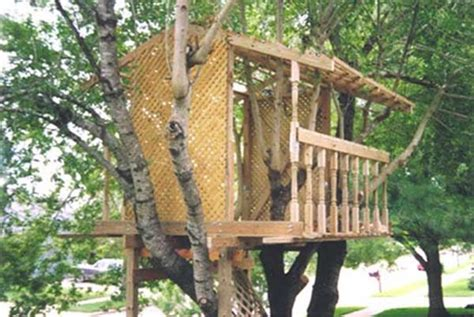 30 Diy Tree House Plans & Design Ideas For Adult And Kids