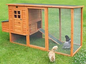 Construire Un Poulailler En Bois : comment construire un poulailler en bois ~ Melissatoandfro.com Idées de Décoration