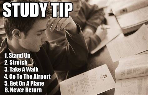 Funny Study Memes - study tip funny pictures quotes memes jokes