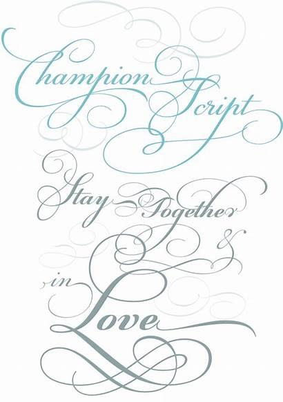 Script Calligraphy Font Alphabet Fonts Champion Pretty