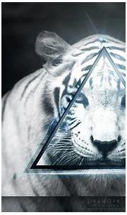 White Tiger wallpaper 1920x1080 by jinyCZE on DeviantArt