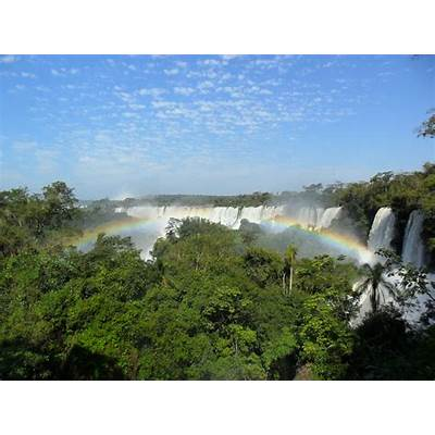 How the Atlantic Forest in Brazil Slipped Away From Us