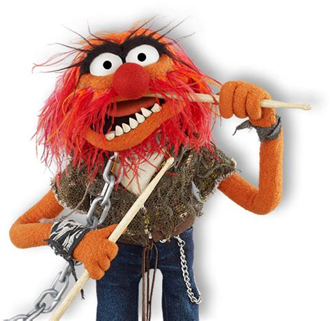 animal muppet pictures  pin  pinterest pinsdaddy