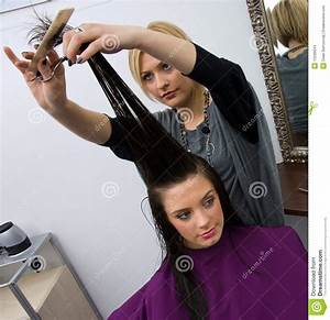Hair Stylist At Work Stock Images - Image: 13336644