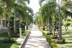 Das thai garden resort vom farang magazin for Katzennetz balkon mit hotel pattaya garden thailand