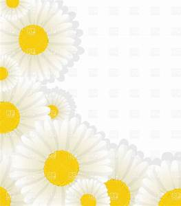 Daisy corner design with copy space, 16901, Borders and ...