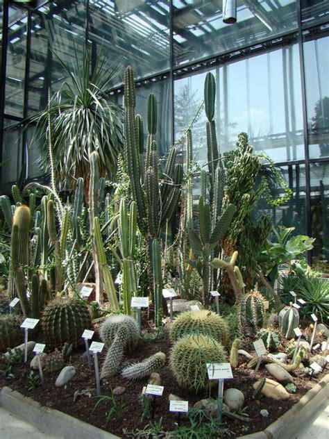 au cactus francophone jardin botanique de toulouse