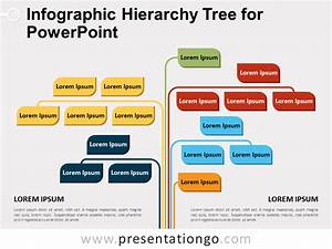 Infographic Hierarchy Tree For Powerpoint