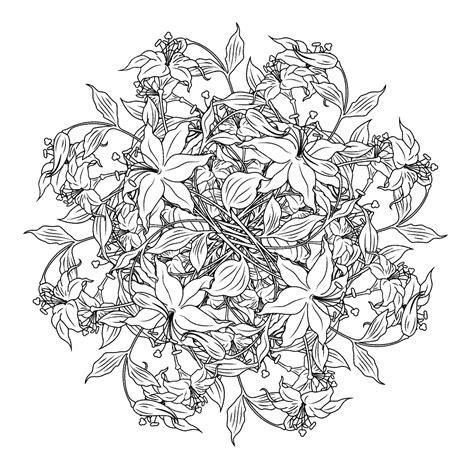 Volwassen Kleurplaten Bloemen by Bloemen Kleurplaten Kleurplatenpagina Nl Boordevol