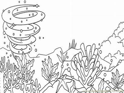 Coloring Ocean Pages Floor Underwater Animal Printable