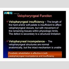 19(new)speech And Velopharyngeal Function