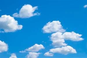 「青い空」の検索結果