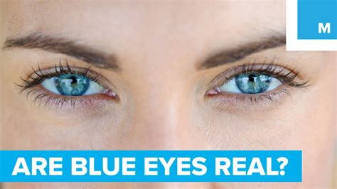 And Blue Eye by Are Blue Really Blue Sharp Science