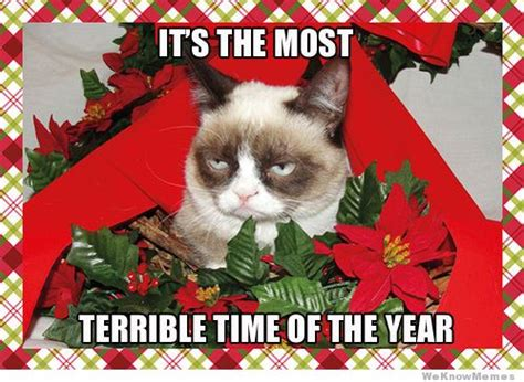 Christmas Cat Meme - christmas bah humbug introvert mind