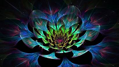 Abstract Colorful Fractal Digital Glowing Flowers Px