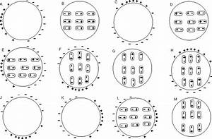 Solved  Which Of The Following Diagrams Correctly Displays
