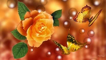 Rose Yellow Wallpapers 3d Flower Desktop Background