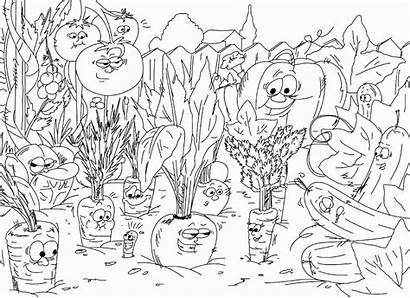 Coloring Pages Garden Gardening Veggies