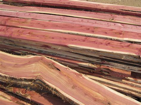 diy chainsaw mill eat tomorrow blog