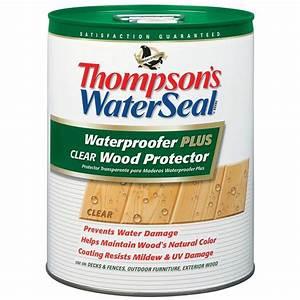 Thompson's WaterSeal 5 gal Waterproofer Plus Clear Wood