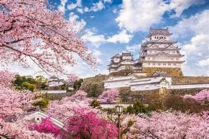 【世界遺産】姫路城観光に便利!おすすめホテルや温泉旅館をまとめました(兵庫)