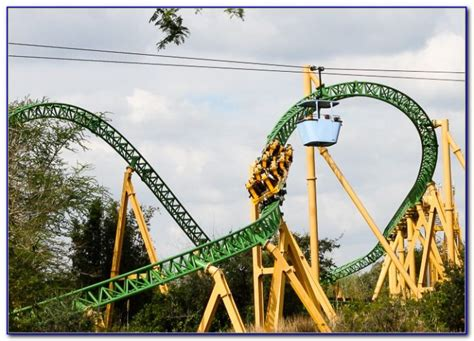 cheetah hunt busch gardens speed garden home design