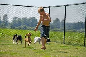 dog kennel facility tour checklist rover stay over With weekly dog boarding