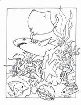 Aquarium Coloring Pa Printable Getcolorings sketch template