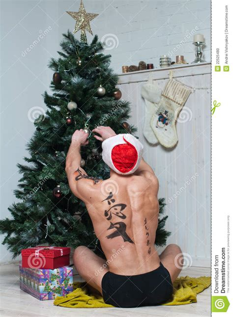 How To Decorate A Hat by Model Decorating Christmas Tree Stock Photo Image 22525480