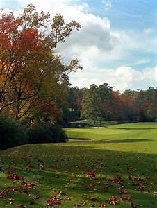 Photos, What, Augusta, National, Has, Looked, Like, In, The, Fall