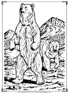 realistic bear coloring pages  adults bear coloring