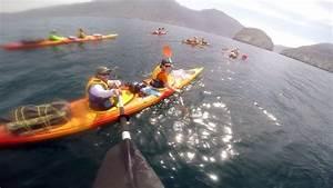 Billet D Avion Tunisie : billet d 39 avion pas cher tunisie kayak ~ Medecine-chirurgie-esthetiques.com Avis de Voitures
