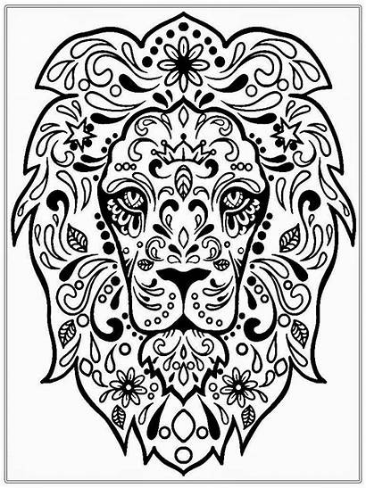 Coloring Adult Pages Celtic Therapy Olds