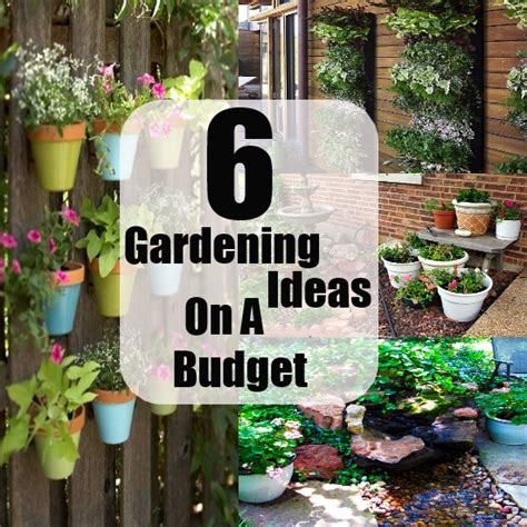 6 gardening ideas on a budget and small cost diy cozy