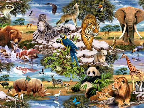 Jungle Wallpaper With Animals - jungle animals five wallpapers jungle animals five stock