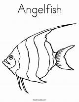 Angelfish Coloring Noodle Twisty Built California Usa sketch template