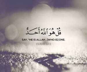 images  daily quranic verses   heart