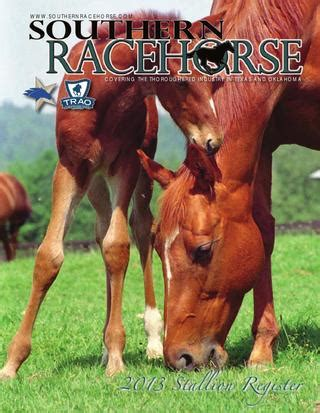 southern racehorse stallion register  american racehorse