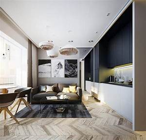 Modern Apartment Ideas Single Person Studio Design With