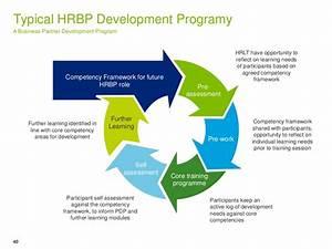 Typical Hrbp Development Programy A