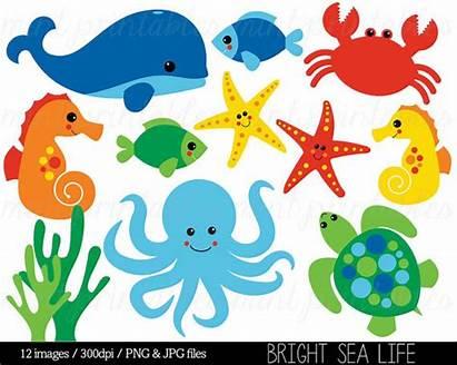 Sea Clip Clipart Under Creatures Animal Ocean