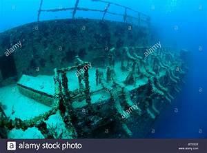 Spiegel Groß Weiß : wreck of uss spiegel grove off key largo coast florida usa stock photo royalty free image ~ Markanthonyermac.com Haus und Dekorationen