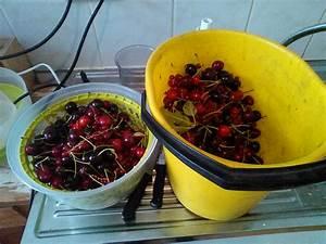 Maden In Kirschen : kirschen und beeren werden zur roten gr tze das reh im ~ Lizthompson.info Haus und Dekorationen