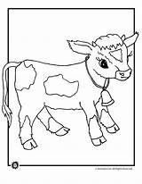 Cow Coloring Animal Cows Herd Dairy Farm Jr Animaljr Colouring Animals Sheet Printables Colors Sheets Activities Adults Printer Send Button sketch template
