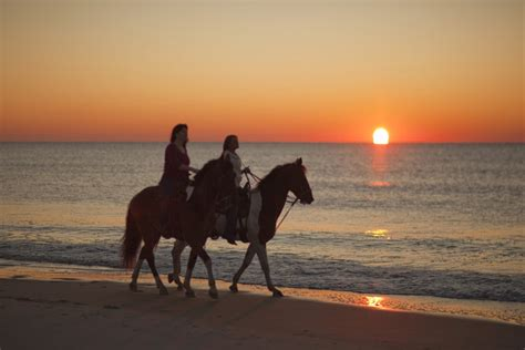 beach horseback myrtle riding horse lovers horses ride ban sc address banned myrtlebeachsc meeting yesterday limits showed enthusiasts recently inside