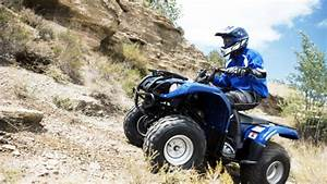 Download Yamaha Grizzly Repair Manual 80 125 350 400 550